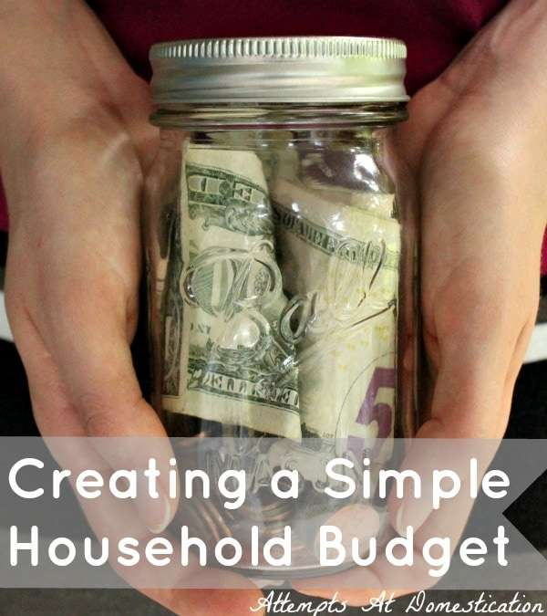 Attempts At Domestication - Creating a Budget